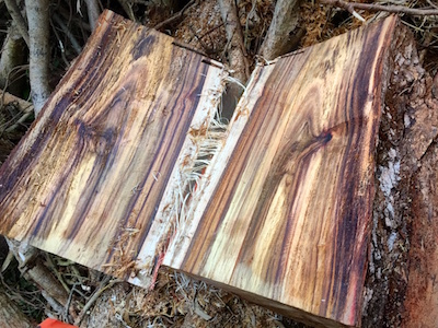 Hawaiian Koa Wood Gifts